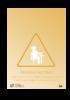 107_-_grossesse_au_travail_0.pdf - application/pdf